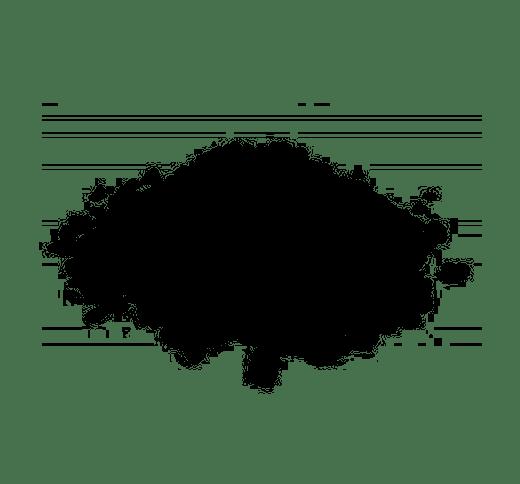 Ekogroszek Bobrek