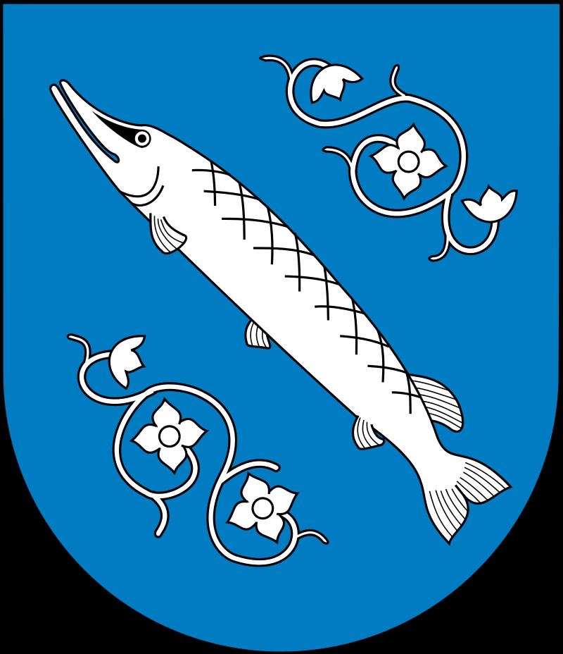 Ekogroszek Rybnik