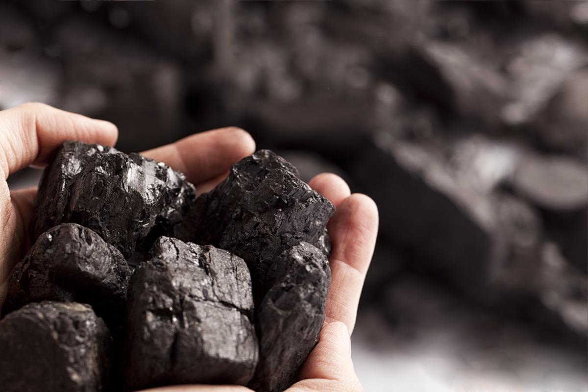 Przykład węgla brunatnego wydobywanego z kopalni odkrywkowej.